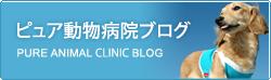ピュア動物病院ブログ
